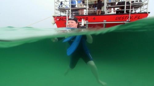 Destin Snorkel in the Water