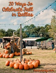 Things to Do in Dallas this Fall