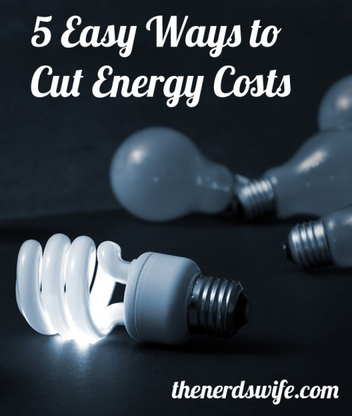 5 Easy Ways to Cut Energy Costs