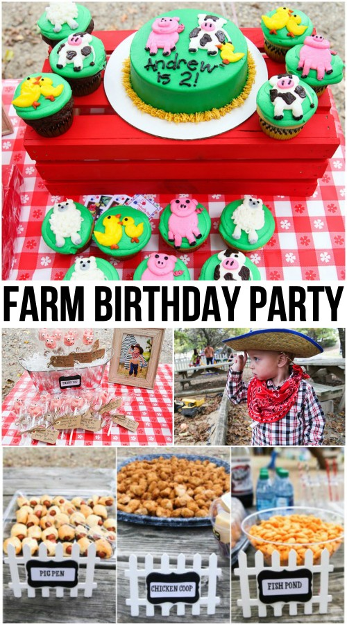 Farm Birthday Party
