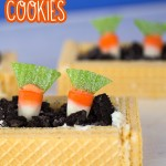 Carrot Patch Cookies small