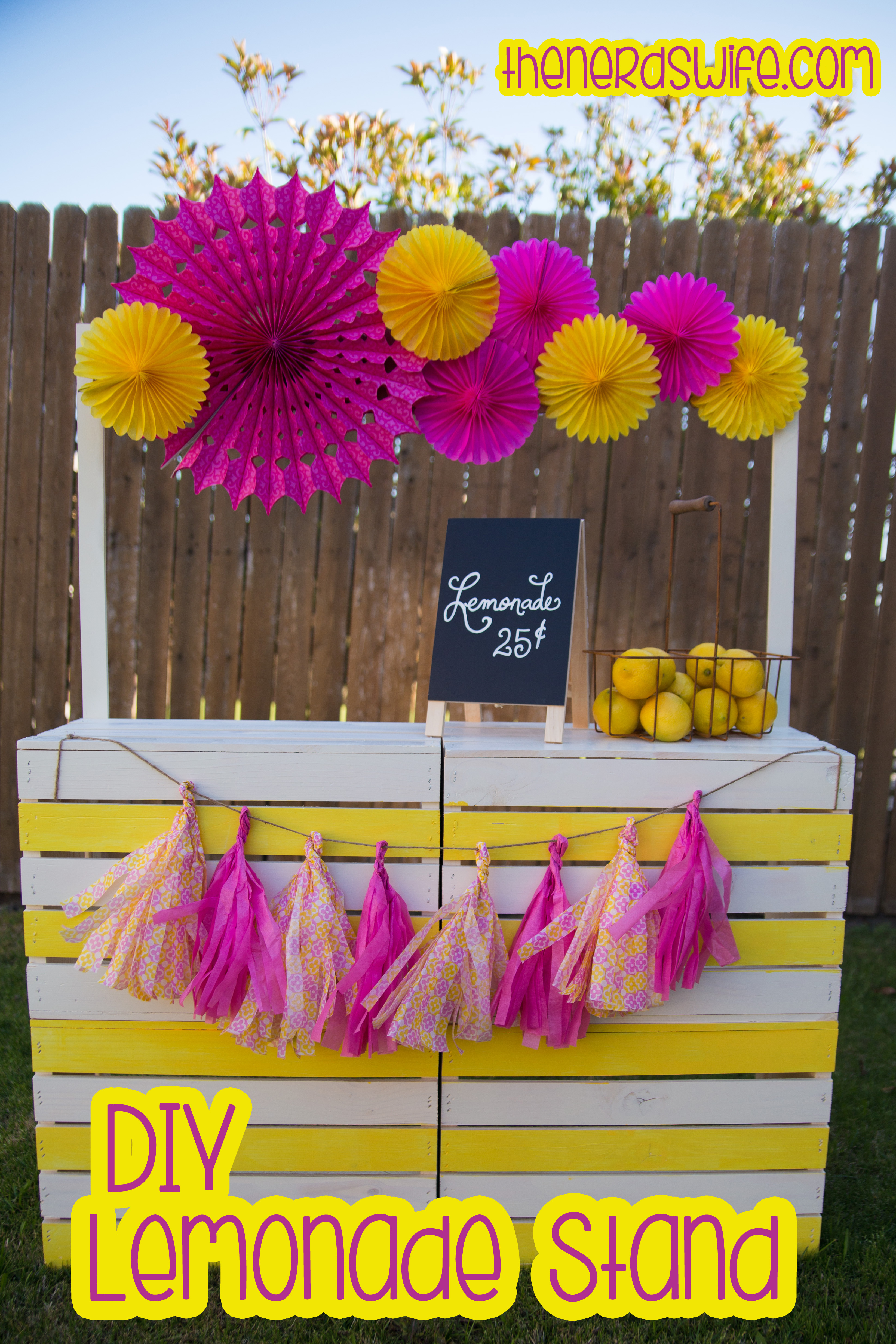 Creative lemonade stand ideas the image for Stand ideas