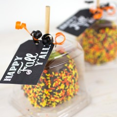Caramel Apple Gift with Tags Square