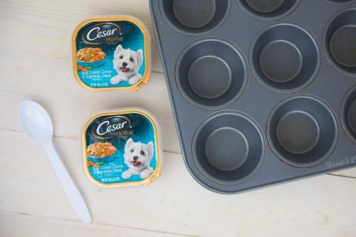 Dog Popsicles 1