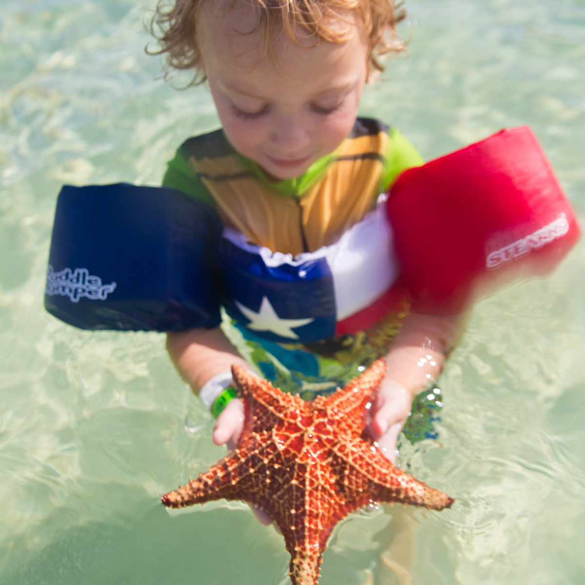 Visiting Starfish Point in Grand Cayman