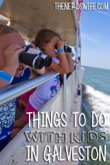 Things To Do With Kids in Galveston