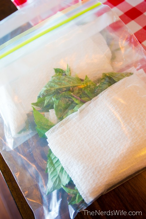 Add a paper towel to fresh herbs to soak up excess moisture.